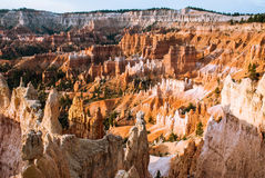 Sunrise in Brys Canyon, Utah, USA. The first rays of the sun rush in Bryce Canyon, Utah, USA Stock Photos