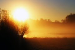 Sunrise burning off the mist Stock Image