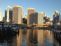 Sunrise in business place. Darling Harbor afternoon, business and commercial place in Sydney, high building and wonderful afternoon Stock Images