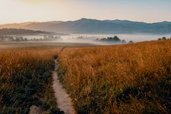 Sunrise in Cades Cove royalty free stock image