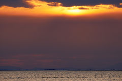 Sunrise in Camargue Stock Image