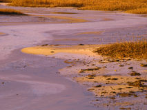 Sunrise on a Cape Cod Marsh Stock Image