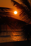 Sunrise in the Caribbean Stock Photography