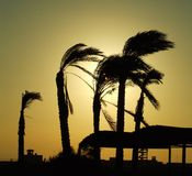 Sunrise on Caribbean beach Royalty Free Stock Photo