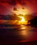 Sunrise in the Caribbean. Stock Image