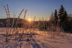 Sunrise in Carpathian mountains Stock Photos