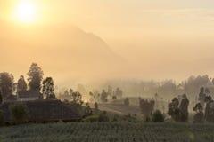 Sunrise in cemoro lawang royalty free stock photo