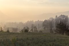 Sunrise in cemoro lawang near mount Bromo stock photography