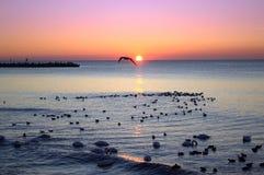 Sunrise coast Stock Images