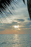 Sunrise with coconut leaf Royalty Free Stock Photography