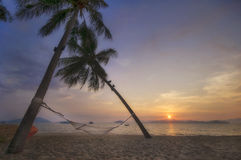Sunrise with coconut palm trees and hammock on tropical beach background. At Phayam island in Ranong province, Thailand. Happy summer holiday concept Stock Photography