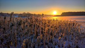 Sunrise on a cold winter morning Royalty Free Stock Photography