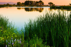 Sunrise In Colorado. Rocky Mountain Arsenal National Wildlife Refuge in Denver Colorado shows its gorgeous landscape along Lake Ladora with Longs Peak in the Royalty Free Stock Images