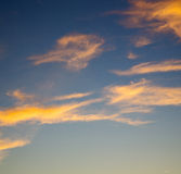 the sunrise in  colored    sky white soft clouds and abstract backg Stock Photography