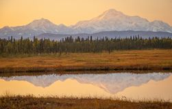 Sunrise colors above Mt. McKinley from Petersville road in Alaska stock image
