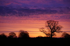 Sunrise over Lincolnshire. Colourful sunrise over Lincolnshire fields Stock Photography