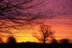 Sunrise over Lincolnshire. Colourful sunrise over Lincolnshire fields Stock Image
