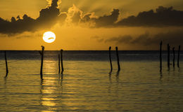 Sunrise with cormorants Stock Photo
