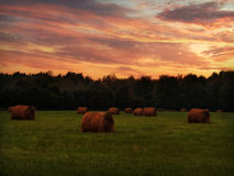 Sunrise in the Country Royalty Free Stock Photo