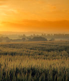 Sunrise at the countryside Royalty Free Stock Photos