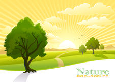 Sunrise at Countryside vector illustration