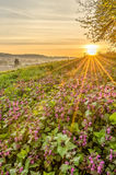 Sunrise in the countryside Stock Photography