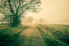 Sunrise at a countryside road in spring Royalty Free Stock Images