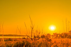 Sunrise in a countryside scenery. In the morning royalty free stock photos