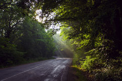 Sunrise on the Crimean road. Before sunset. Royalty Free Stock Photo