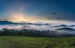 Sunrise. At Dalat, Vietnam. The city is well known for the misty weather Royalty Free Stock Photos