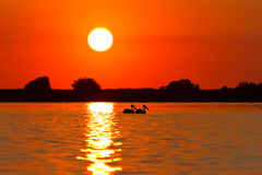 Sunrise in the Danube Delta royalty free stock photo