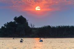Sunrise in the Danube Delta. A beautiful sunrise in the Danube Delta, Romania stock photography