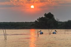 Sunrise in the Danube Delta, Romania Royalty Free Stock Images