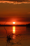 Sunrise in Danube Delta Royalty Free Stock Photography
