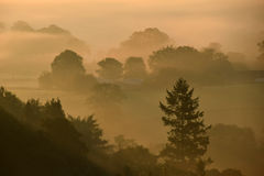 Sunrise on Dartmoor. UK  on a misty autumnal morning showing the trees in shadow Royalty Free Stock Photo
