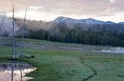 Sunrise Dawn over Bison path next to steaming fumaroles in Yellowstone National Park in Wyoming Royalty Free Stock Images