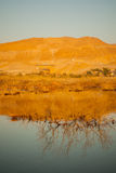 Sunrise in the Dead Sea Royalty Free Stock Photography