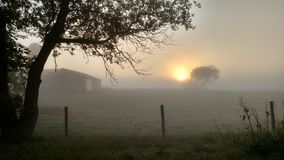 Sunrise through a dense fog on an early morning on the farm Royalty Free Stock Photography