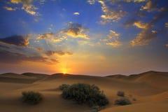 Sunrise in desert Stock Photography
