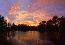 Sunrise in diamond creek Stock Photography