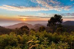 Sunrise at Doi Ang Khang. Chiang Mai ,Thialand Royalty Free Stock Image