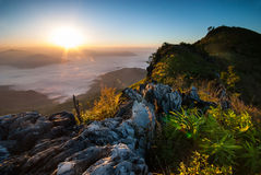 Sunrise at Doi Pha Tang Royalty Free Stock Photography
