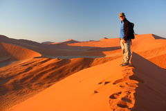 Sunrise at dune 45. Tourist hiking dune 45, Namibia Royalty Free Stock Photo
