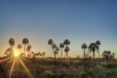 Sunrise on El Palmar National Park, Argentina Stock Photos