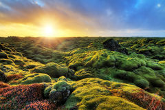 Sunrise Eldhraun landscape Stock Image