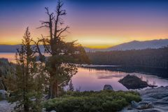 Sunrise Emerald bay. An old pine tree overlooks the sunrise at Emerald bay, Lake Tahoe, CA. Emerald bay is known for its calm water and beautiful scenery royalty free stock photos
