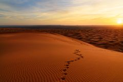 Sunrise in Erg Chebbi Sand dunes near Merzouga, Morocco Royalty Free Stock Photo
