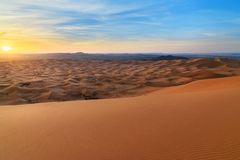 Sunrise in Erg Chebbi Sand dunes near Merzouga, Morocco Stock Photos