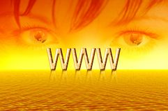 Sunrise. Eyes of internet Stock Images