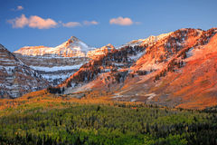Sunrise fall glow in the Wasatch Mountains. Stock Photos